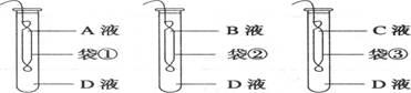 蔗糖溶液b    c.蔗糖溶液c     d.蔗糖溶液d