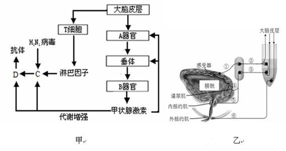 电路 电路图 电子 原理图 569_300