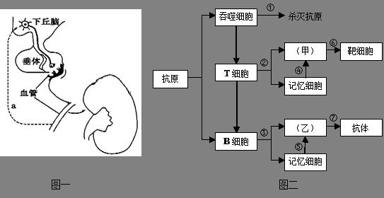 电路 电路图 电子 设计 素材 原理图 543_280