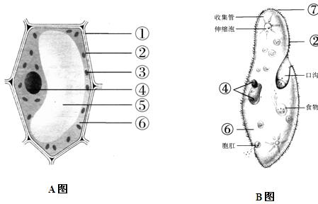 试卷详情  26 . 下图a为植物细胞模式图,b为草履虫结构示意图.