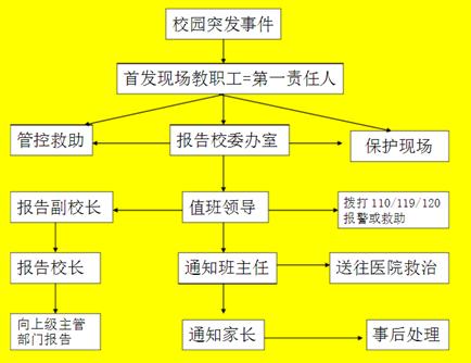 流程图/结构图