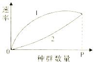 试题版式增长习题答案/曲线/练习题/测试题及种群苯-乙苯二元物系数量塔设计图片