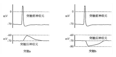 电路 电路图 电子 设计图 原理图 485_239