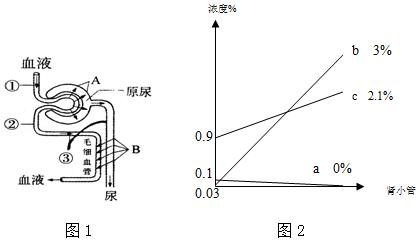 图1是人体肾单位结构示意图,请据图回答